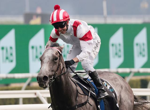 The Everest Race 2020 - finishing order, classic wins, odds, tips