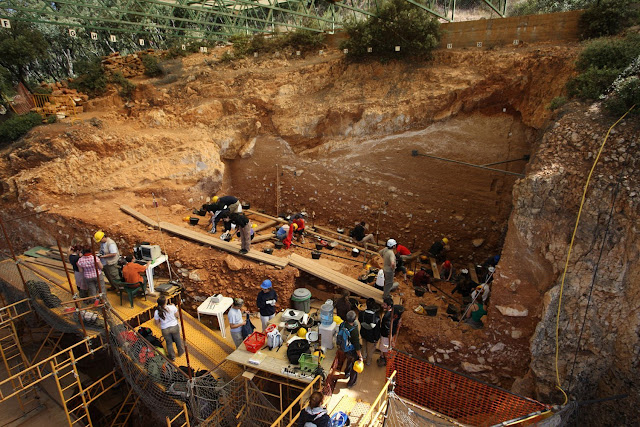 New discovery fills gap in Atapuerca's history of human evolution