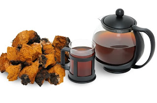 7 Unexpected Health Benefits Of Chaga Mushrooms Tea