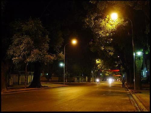 Trong bóng cây ngủ đêm- Phạm Ngọc Thái