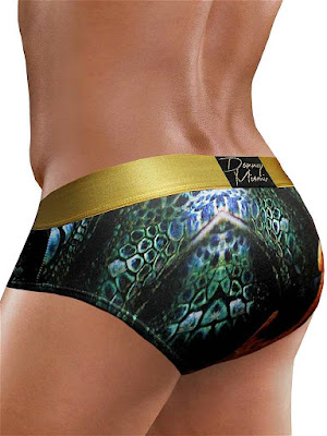 Danny Miami Regal Habitat Brief Underwear Back Gayrado Online Shop