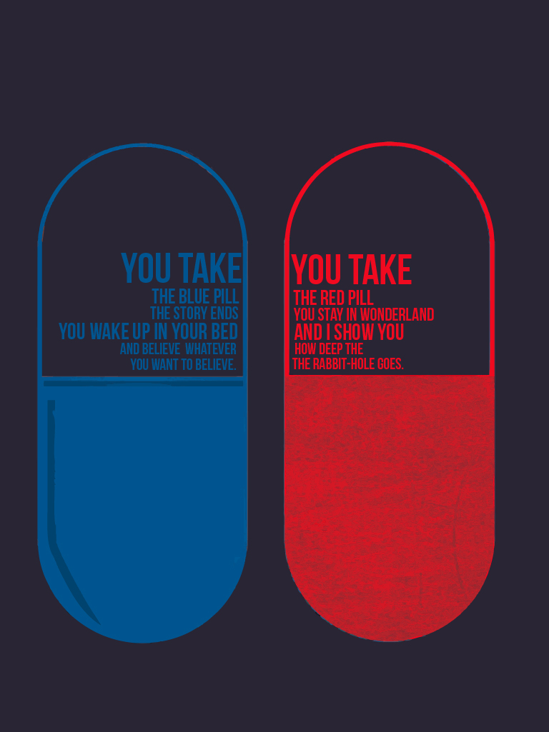 the blue pill or the red pill my extraordinary ordinary journey