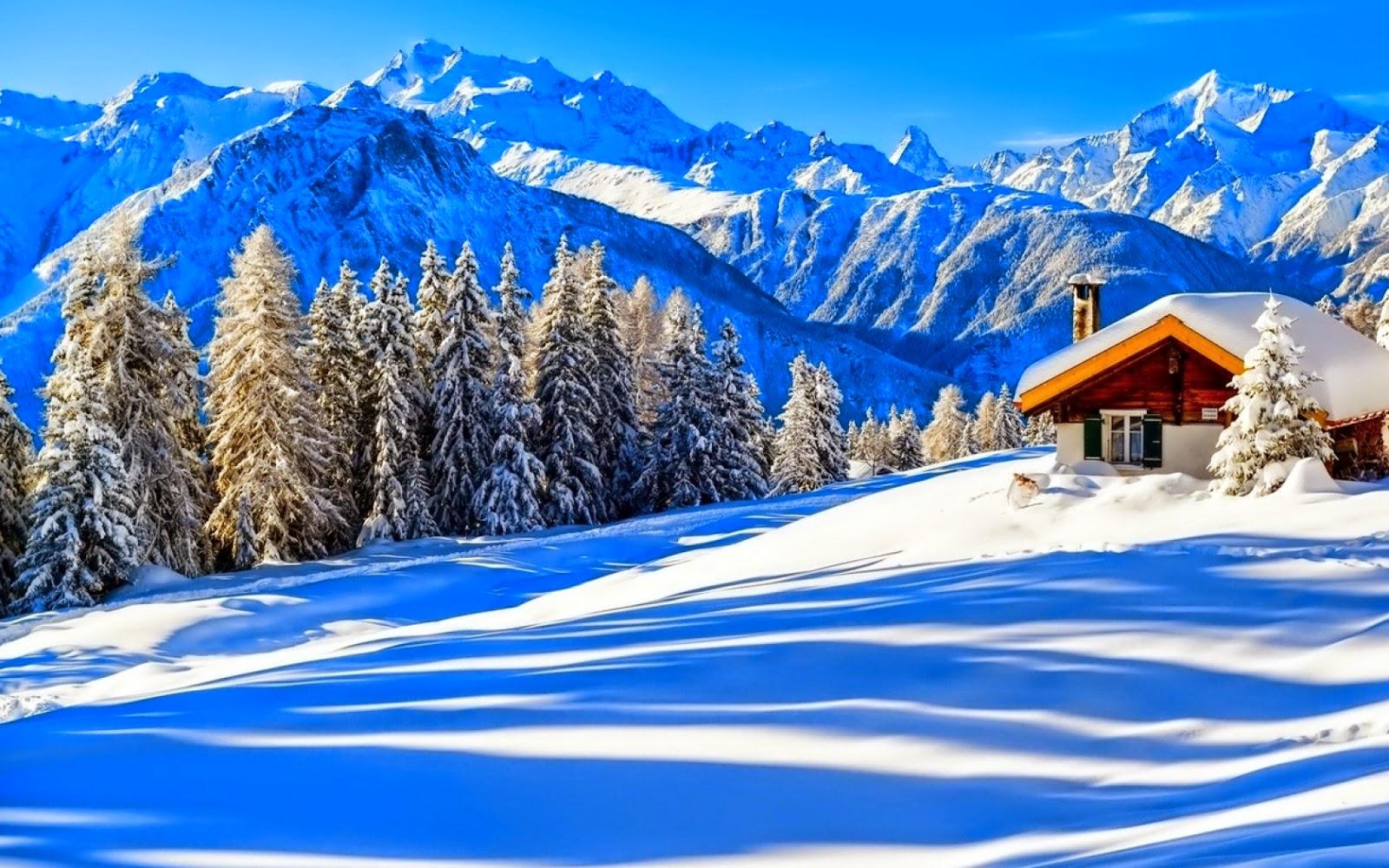 Wooden Tools Imagini Frumoase De Iarna Poze Super Misto