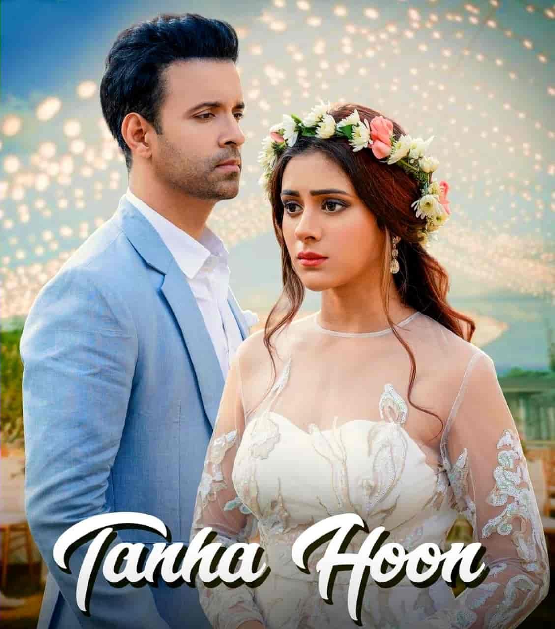 Tanha Hoon Hindi Song Image Features Aamir Ali And Hiba Nawab