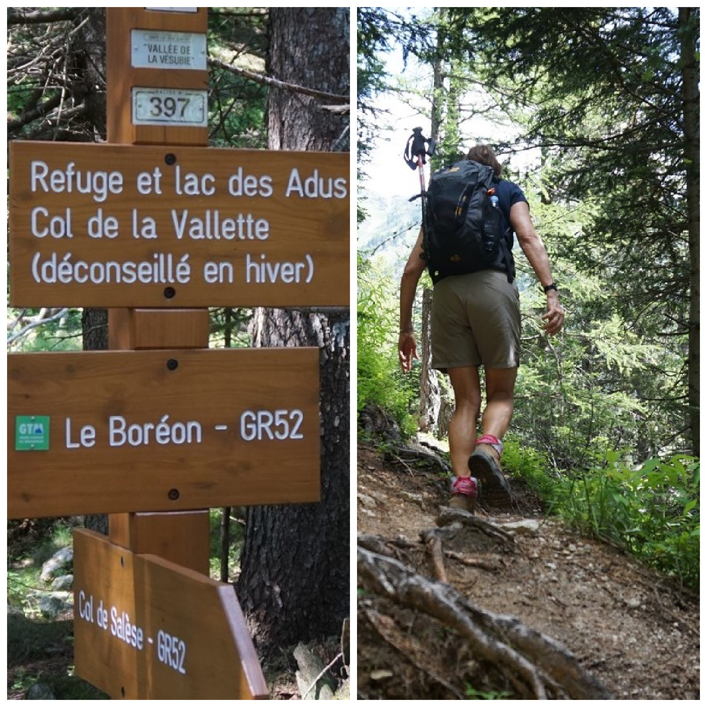 Signpost#397 and trail start