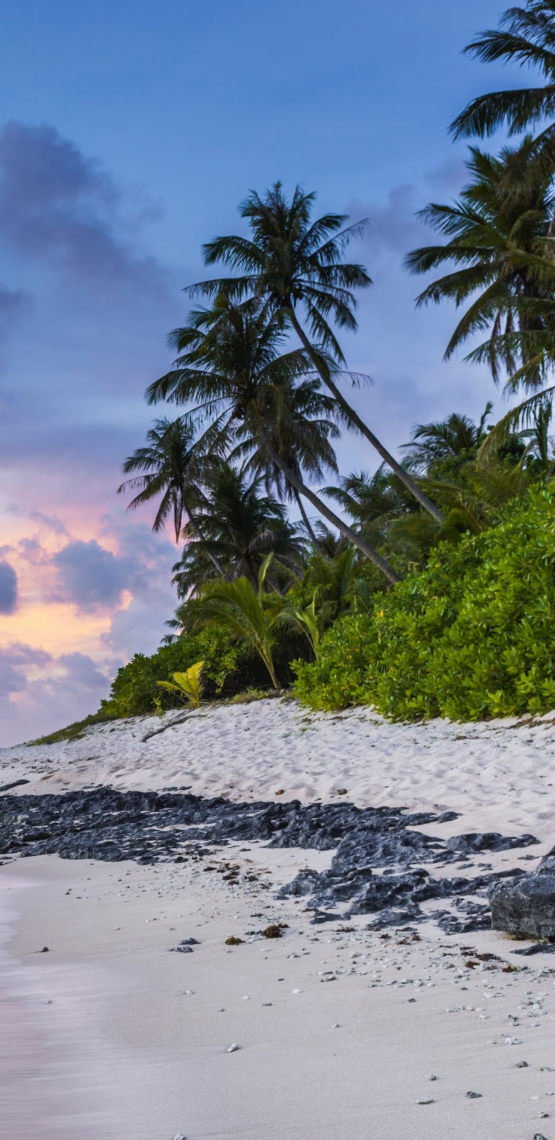coast-photograph-sea-body_of_water-tropics