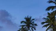 Coast photograph sea,tropics,beach | Mobile Wallpaper