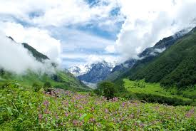 National Parks In Uttarakhand