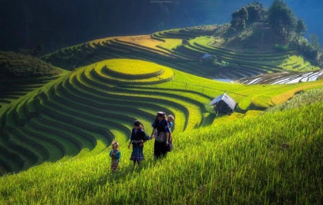 """A series of """"utopian"""" photos about Vietnam on foreign magazines makes you want to explore"""