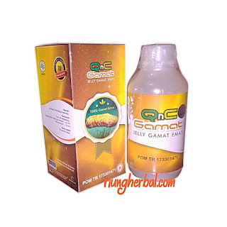 Qnc Jelly Gamat (Teripang Emas)