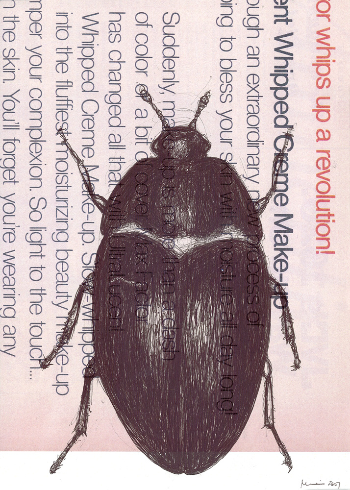 Beetle, 2007. pen on found paper.