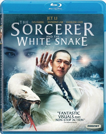 Free Download The Sorcerer And The White Snake 2011 Dual Audio Hindi  BluRay 300mb