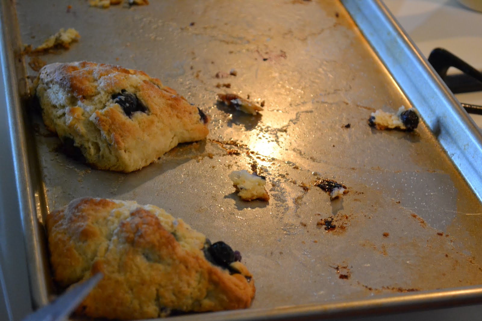 America S Test Kitchen Dough Scraper