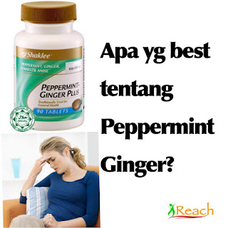 Image result for peppermint buang angin dalam badan'