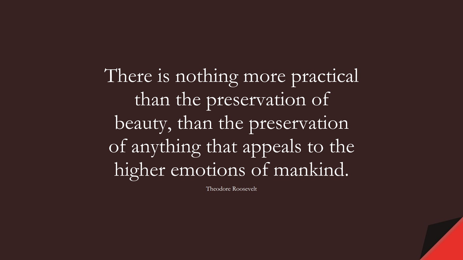 There is nothing more practical than the preservation of beauty, than the preservation of anything that appeals to the higher emotions of mankind. (Theodore Roosevelt);  #HumanityQuotes