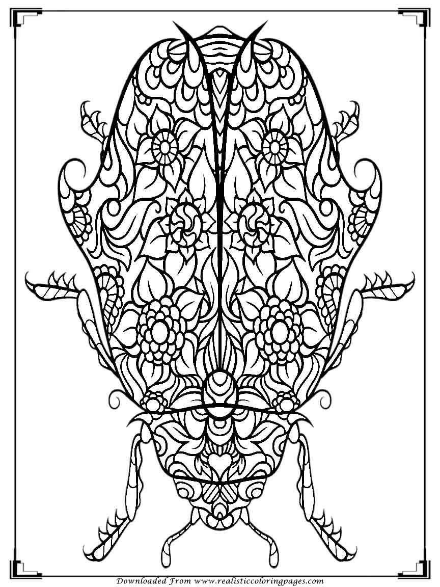 printable bugs coloring pages for adults realistic coloring pages