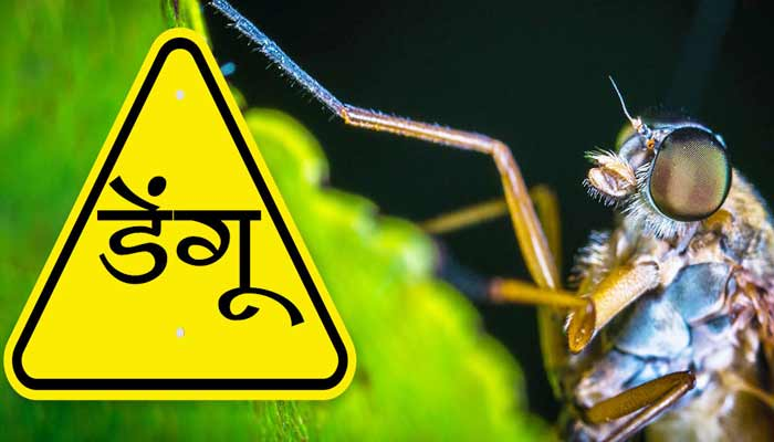 Meaning of Dengue in Hindi