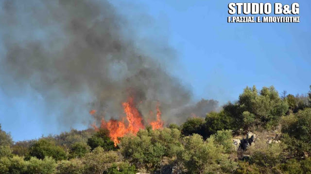 Αργολίδα: Πυρκαγιά στην περιοχή των Μυκηνών