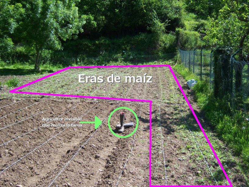 Zona de maíz y huerto grande