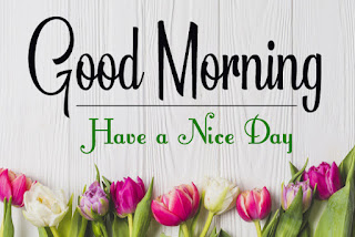 Good Morning Royal Images Download for Whatsapp Facebook3