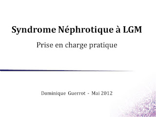 Syndrome Néphrotique à LGM .pdf
