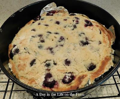 Sour Cherry and Mahleb Crumb Cake