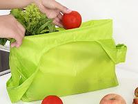 Cara Sederhana Menghindarkan Eco Bag dari Kuman Penyakit
