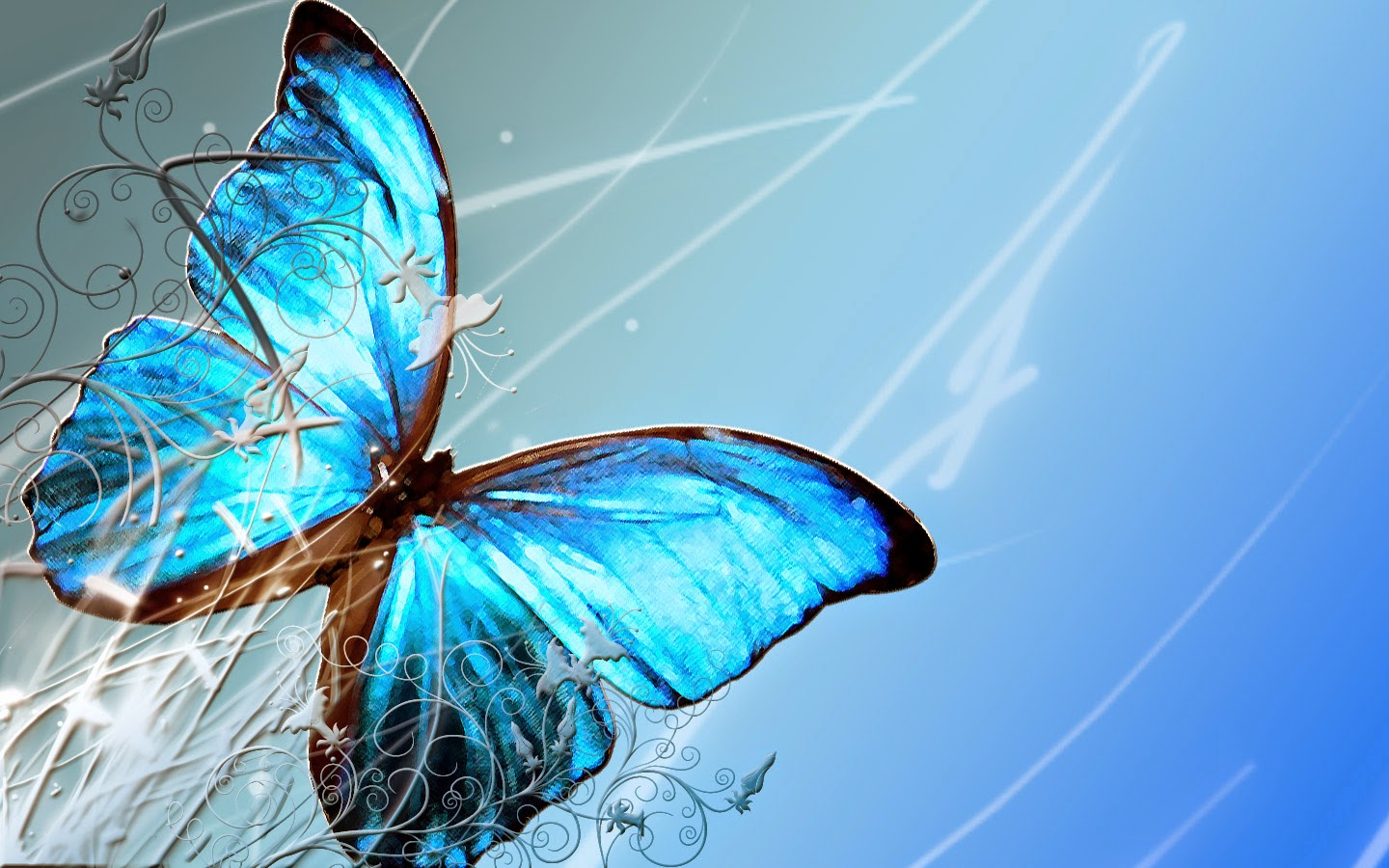 Colorful Butterfly Hd Wallpapers Real Amp Artistic