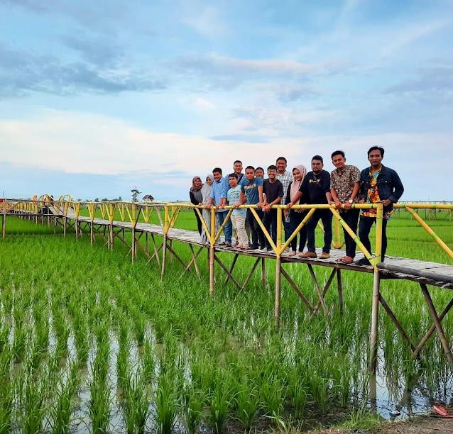 Taman Wisata Sawah Pematang Johar
