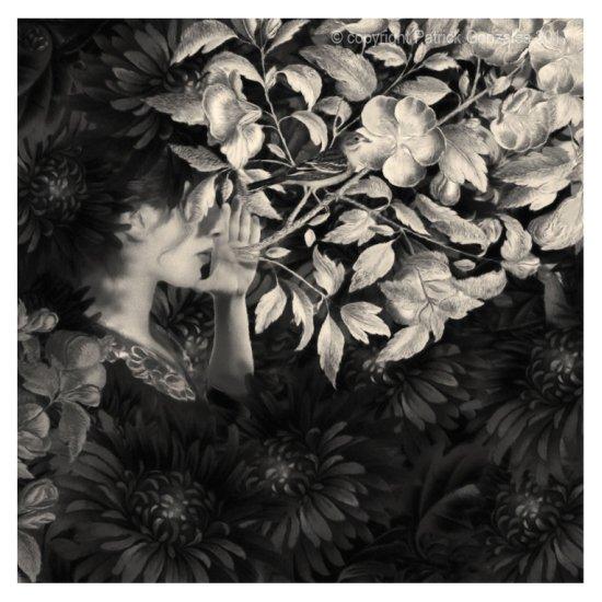 Patrick Gonzales arte fotografia pintura digital preto e branco vintage surreal etéreo vitorianas