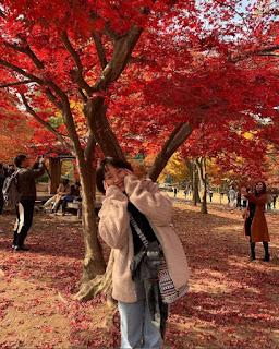 Chia sẻ kinh nghiệm tự học tiếng Nhật du học