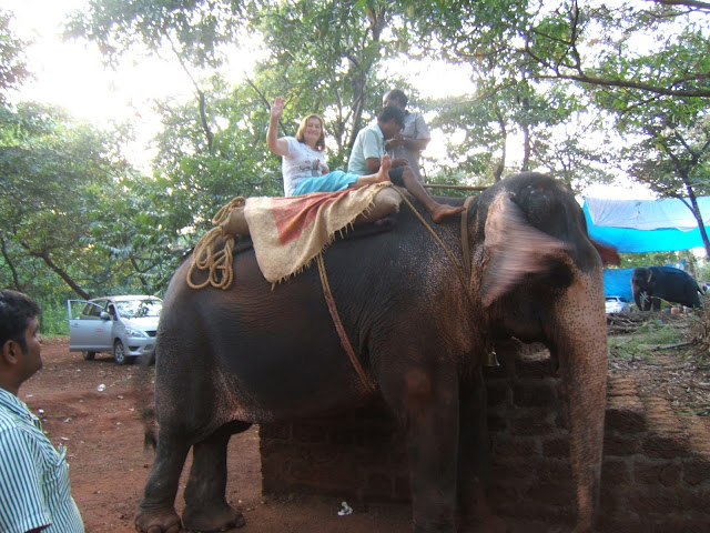 посадка на слона