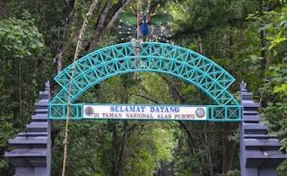 Hutan Purwo terangker, Jawa Timur