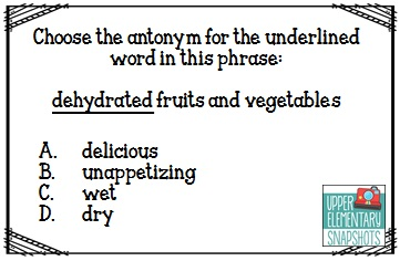 Upper Elementary Snapshots: Test-taking Strategies: Synonyms and ...