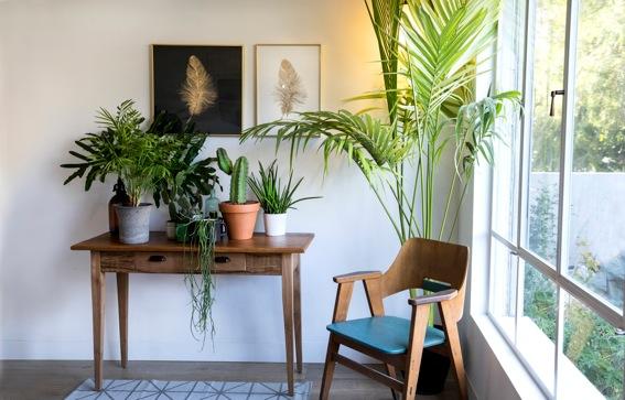 Interiors trend Ambiente Trade show