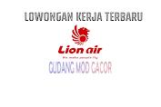 Loker Pramugari Pramugara Lion Air Terbaru Juli 2021