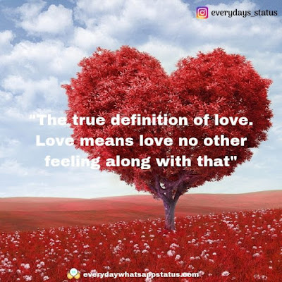love quotes for her   Everyday Whatsapp Status   Unique 50+ love quotes image about life
