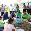 Panen Raya Tambak Udang, Bupati Bangkalan Dukung Ketahanan Pangan di Masa Pandemi