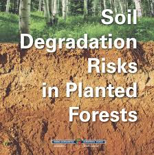 Carbon Dioxide Emission: Soil erosion responsible