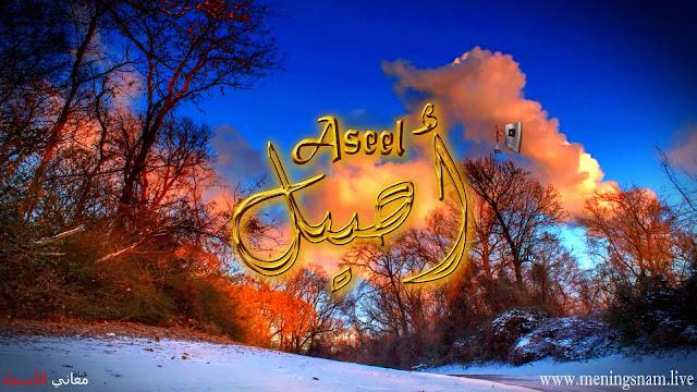 معنى اسم اصيل وصفات حامل و حاملة هذا الاسم Aseel