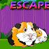 Guinea Pig Family Escape