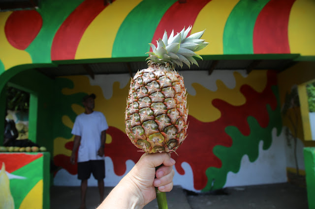 grenada bus stop and pineapple,