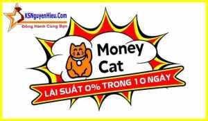 Vay nhanh tại Money Cat nên xem ngay kẻo trễ