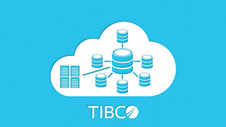 IBM for Application Developer: Tibco