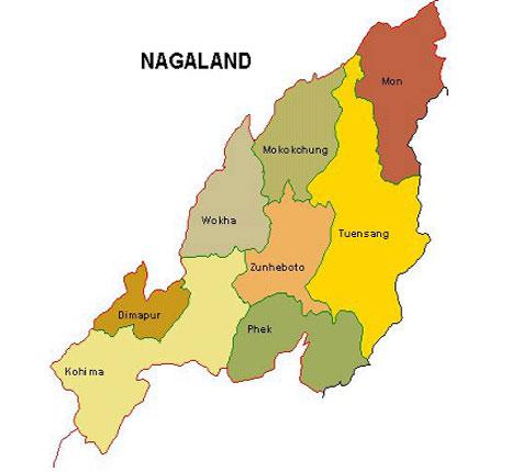 kmhouseindia: 2013 Nagaland Assembly Elections -Feb 23,2013