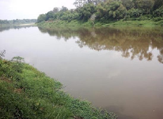 Limbah Pabrik Diduga Cemari Sungai Lematang, 12 Desa Ancam Demo PT TEL
