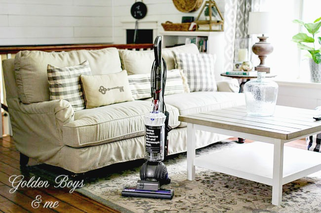 Dyson vacuum review, kids and pets