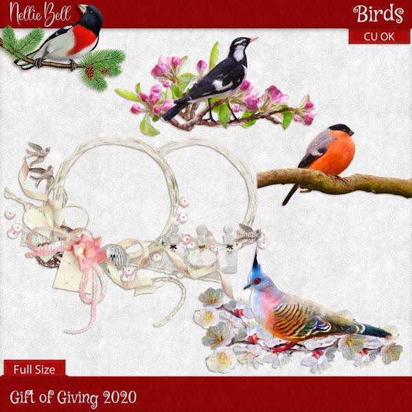 https://1.bp.blogspot.com/-qvfZ4E6Hw90/X-H9xhjzbkI/AAAAAAAAH0o/PwPFQYKn2j8sVKiqOpKvVIr-7jtvF0-kwCLcBGAsYHQ/w640-h640/1nb_birds.jpg
