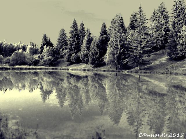 Zetea - peisaj cu reflexie