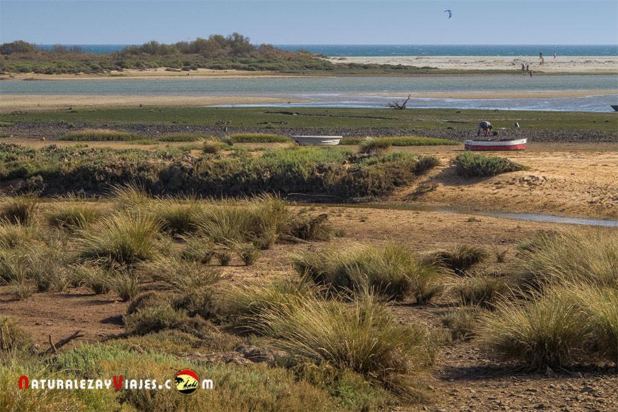 Ría Formosa desde Cacela Velha, Algarve